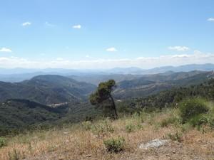 Montes des Malaga